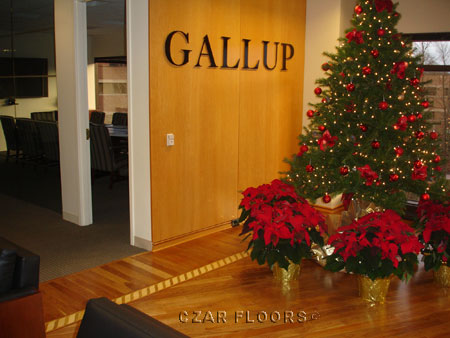 373: Floor and Border project at Gallup HQ in Princeton