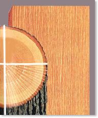 Rift sawn hardwood lumber